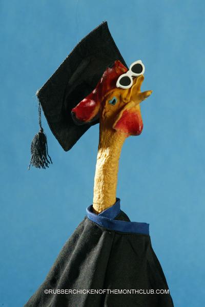 graduation, intelligence
